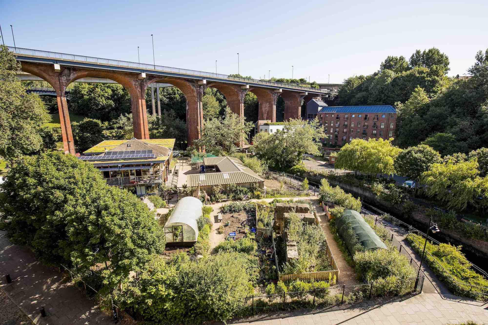 Agriculture urbaine, les atouts